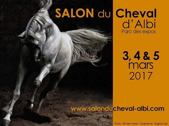 Salon du cheval d albi 2 4 5 mars arew midi pyr n es for Salon du cheval lyon 2017
